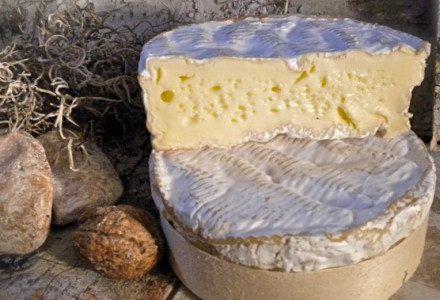 A legfranciább francia sajt – Camembert de Normandie