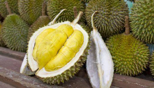 Valami bűzlik Ázsiában: durián