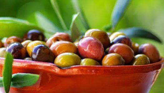 A legjobb olasz olívaolajok