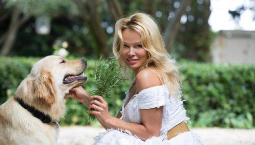 Pamela Anderson vegán pop-up éttermet nyitott a francia riviérán