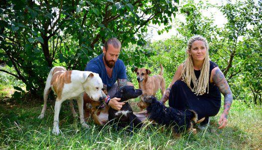Tetovált (növény)szerelmesek – Interjú a Vegan Love tulajdonosaival